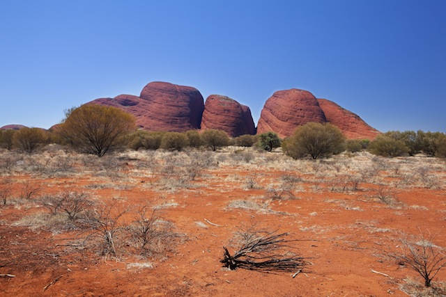 red center_ the Olgas